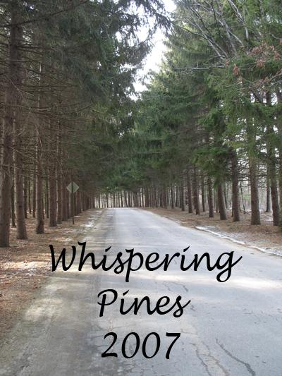 pineentry.jpg