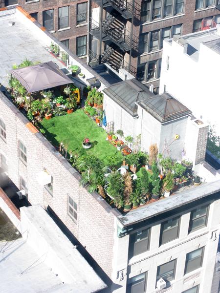 roofgarden