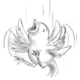 mouse bird