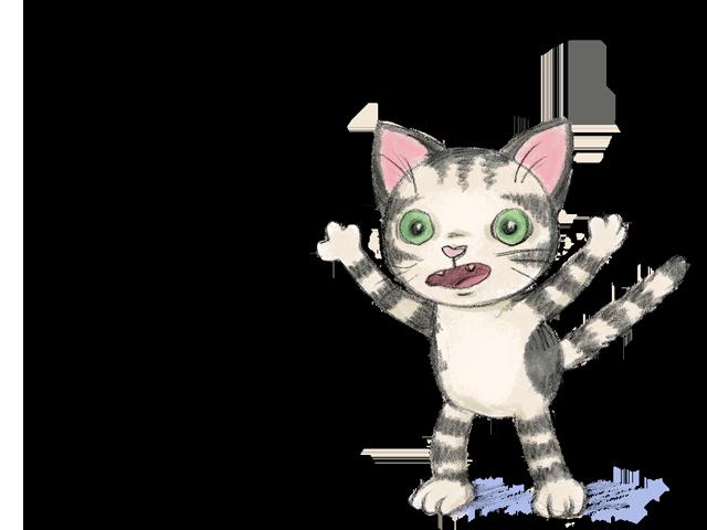 cat-nooooo