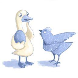 chicken duck egg